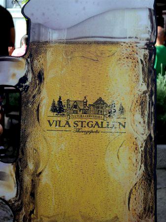 Vila Saint Gallen