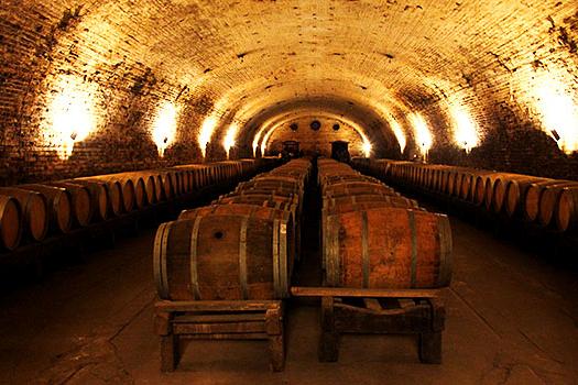 melhores vinícolas do Chile: Cousino Macul